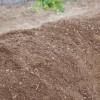 【家庭菜園の土作りのやり方】