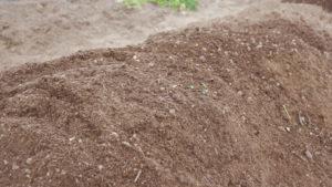 [:ja]【家庭菜園の土作りのやり方】[:]
