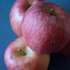 【りんご】