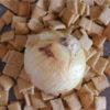 (日本語) 【新玉ねぎクッキー】