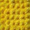 【干し菊の作り方】