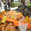 【Farmer's Market @ UNU】