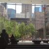 【ニューヨーク旅 その12 MoMA と WHITNEY MUSEUM 】